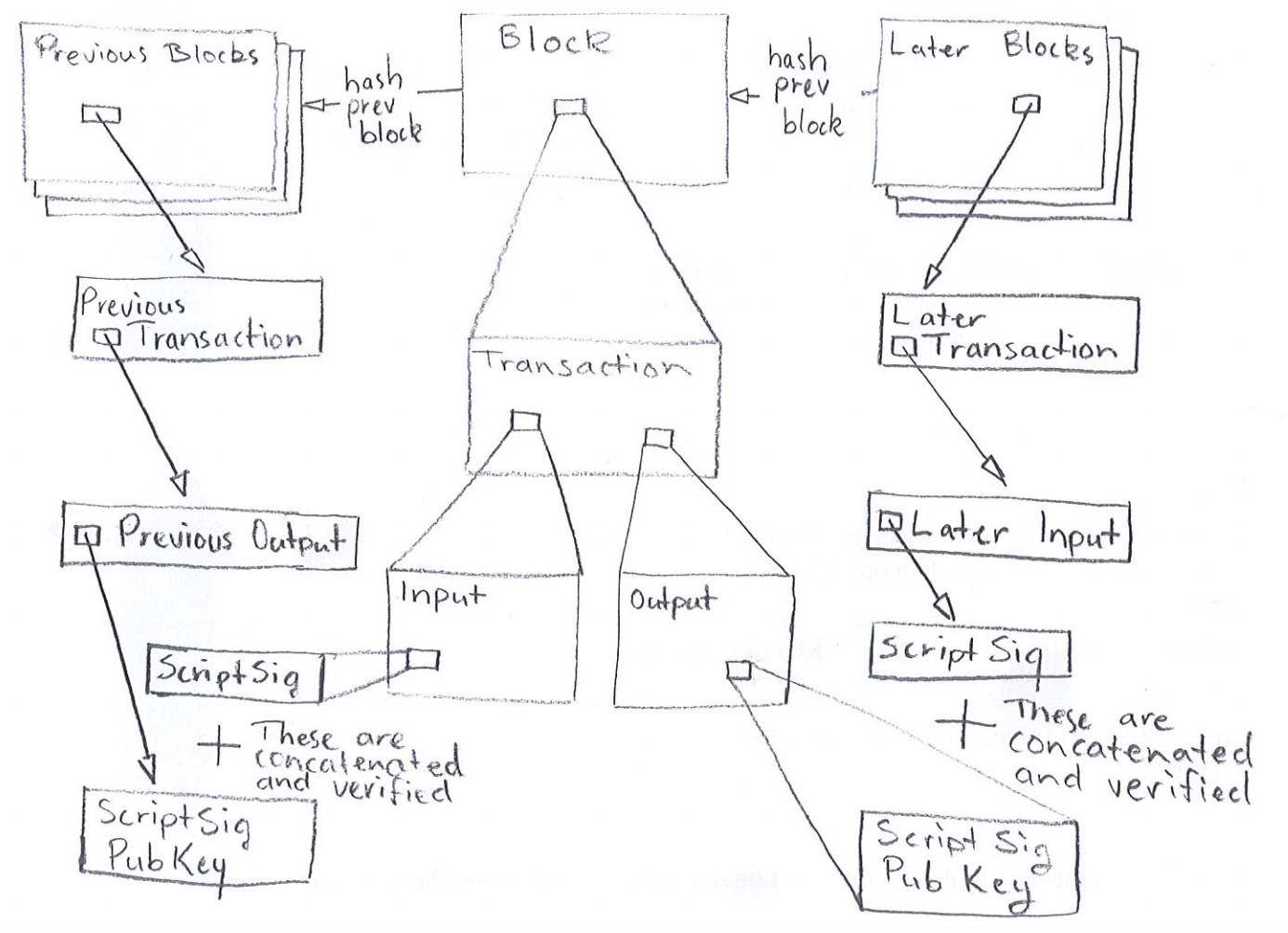 Diagram showing a transaction, it's parts, and how they relate to earlier and later transactions