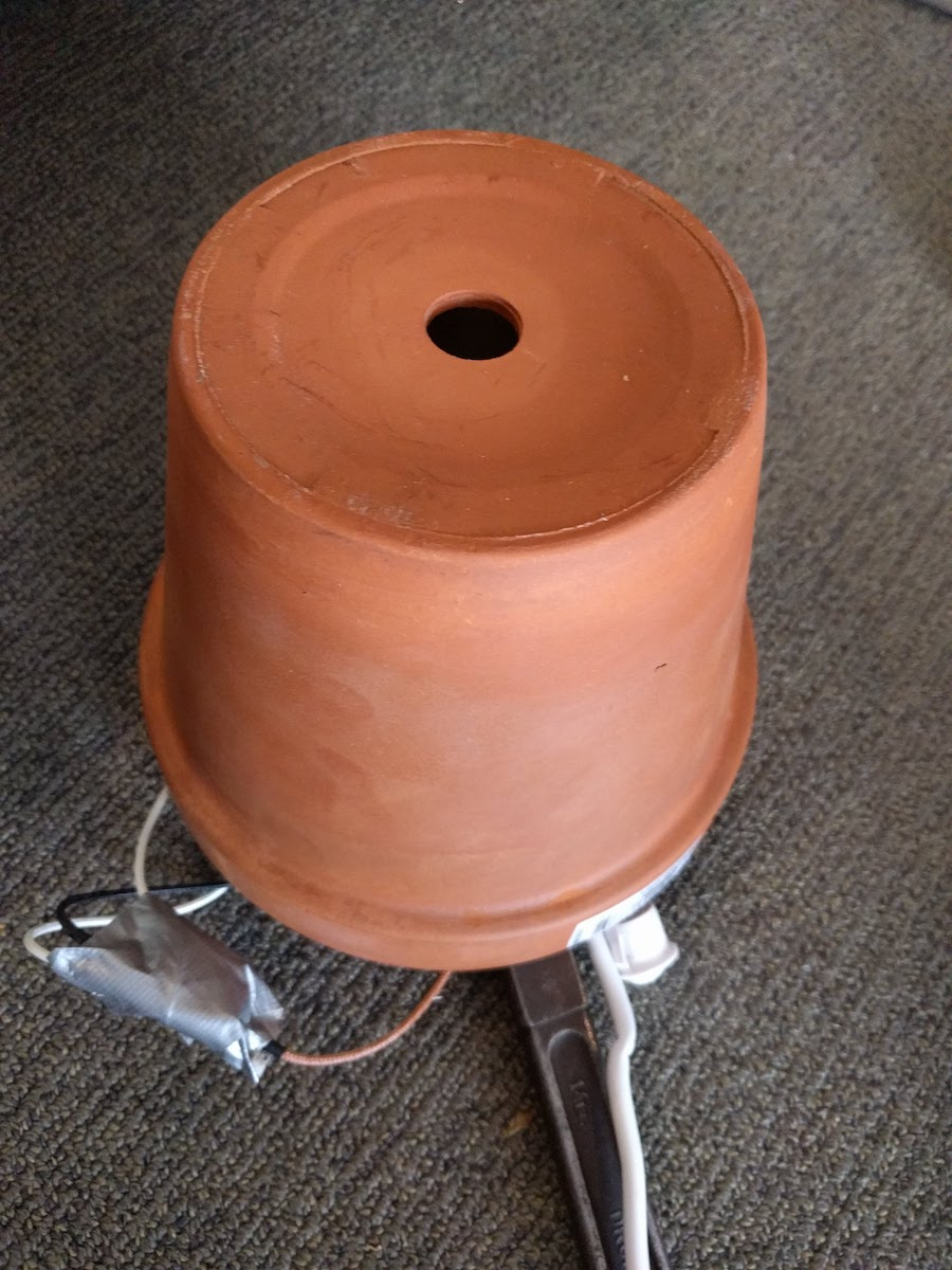 potted coffee roaster
